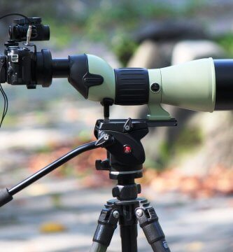Digiscoping with Nikon ED